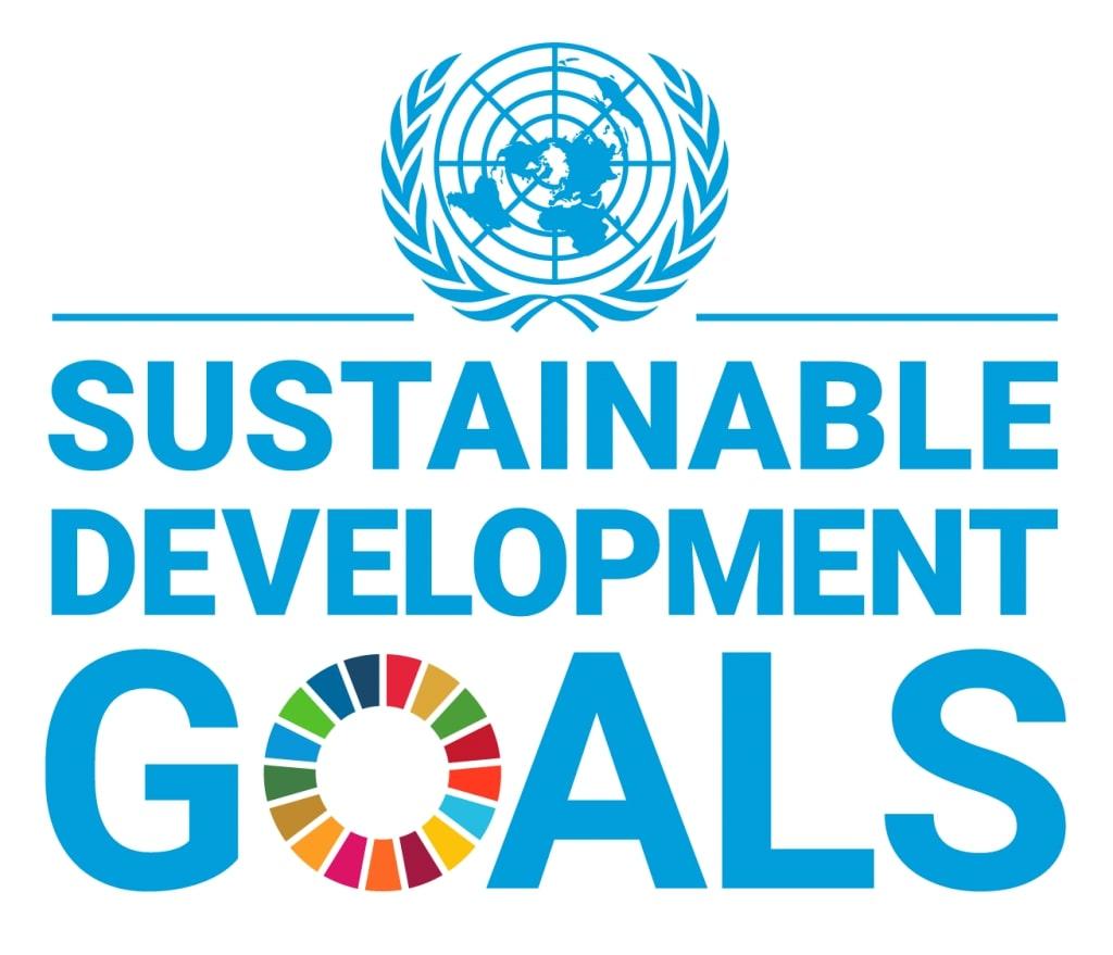 UN SDG social impact measurement